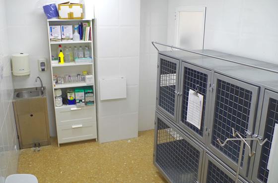 hospitalizacion_veterinaria