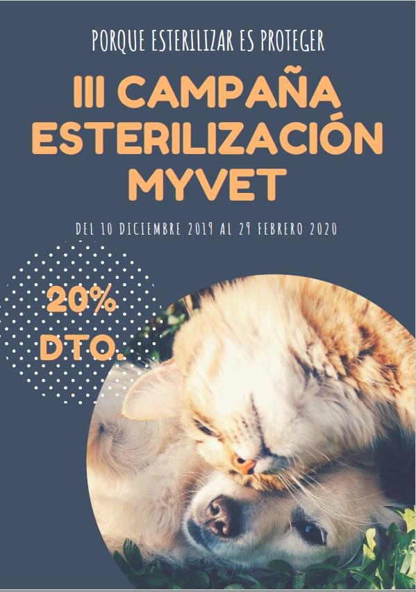 campaña esterilización Teruel